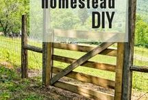 Homestead DIY / Need a project? Check out the best homestead DIY on Pinterest! DIY | Homesteading | Do it Yourself | DIY Crafts | Homestead Projects