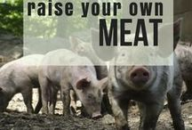 Raise Your Own Meat