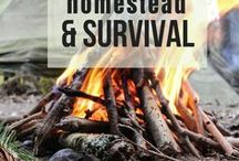 Homesteading and Survival / Vegetable gardening, raising livestock, and general preparedness. Come and learn the skills of homesteaders and survivalists!