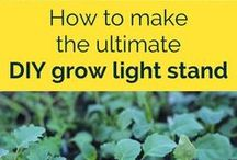 Indoor Gardening / Learn how to grow your own food indoors. Includes tips on starting seeds, apartment gardening, aquaponics, grow lights and more