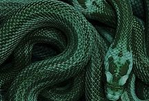 colour > emeralds shine.