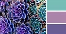 Magical Color Palettes / Color Palettes and Moodboards with a magical, holographic & iriscendent touch.