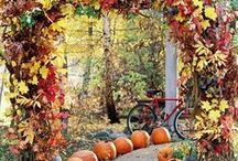 Autumn Wedding Ideas / Beautiful ideas for Autumn weddings and events, including autumn wedding centrepieces, foliage and leaf arches and pumpkins.