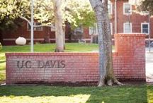 Davis the Beautiful / Appreciation for our hometown, Davis, CA!