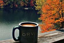 Tea & The Outdoors