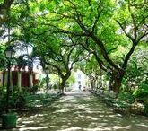 Fortaleza, cidade mágica / Encante-se com Fortaleza! Conheça essa cidade maravilhosa e suas paisagens, comidas, artesanatos, pessoas e tudo o que ela tem a lhe oferecer.