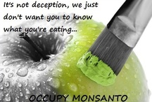 Occupy Monsanto and GMO's / GMO, seeds, deception, food, drink, milk, cows, chickens, soy, corn, bovine groeth hormone, rBGH, plants, disease, Monsanto, capitalism, genetically modified foods, plants / by Stacerina Ray