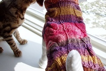 Pets & Pet Parents from the Hudson Valley / a collection of pet friendly items from the Hudson Valley Etsy Team