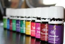 Young Living Oils / by Haylee Lindberg Barber