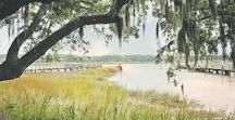 Lowcountry Living / Check out our patio, backyard and stunning Lowcountry views.