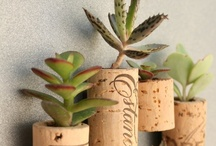 Up-Cycle Wine Bottles