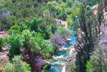 Arizona Day Trips / by Rebecca DeVere