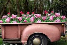 Inspiration: Crazy Container Ideas / We just love these . . .
