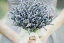Weddings & Births & Invitations & Party Ideas