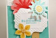 Cards - Stampin Up / by Lynn Hoyt