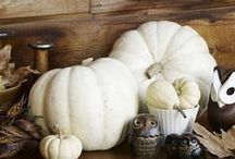 AUTUMN / Fall, Autumn Decor, Party Thanksgiving