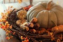 Holidays - Thanksgiving/Halloween/Fall / by Annabelle Lanham