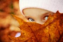 ಌ Fall in love with Fall ಌ
