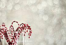 Winter / Magic, Mistleoes & Margaritas