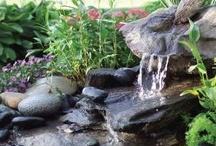 Fountain / by Debora Bland
