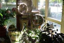 Autumn decoration / www.facebook.com/ibolya.virag
