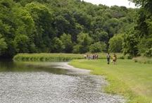 Home Sweet Home: Life at Camp Kupugani / Camp Kupugani is surrounded by beautiful woods with endless trails, natural limestone rock climbing walls, and a 5-acre lake. Take in the sights, the serene and gentle land, and the place we call home.