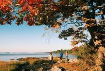 Around Town / Glimpses of the landscape, architecture, and people that encompass Freeport, Maine.