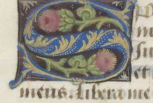 Illumination & Calligraphy