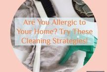 CLEANING / Hard water stains? Scuffs on the wall? Streaky windows? Bad smelling garbage disposal? A board of ideas and cleaning solutions for maintaining a spic and span home.
