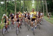 Classic Cycling / by mtrelaun