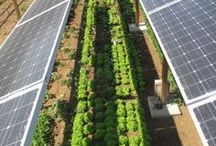 Referências Energia Solar