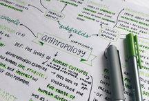 notes & organization