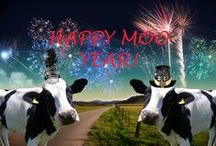 Mooing into a New Year / A new year is approaching and what's a New Year without a New Year's Resolution that involves loosing weight and eating healthier. Check out these healthy recipes and tips to keep you slim and fit for 2015. / by Southeast Dairy