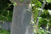Garden ~ Zinc / Happy pinning.. no limits.. no blocking..❤️