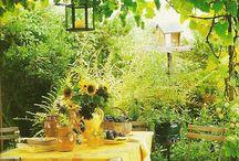 Garden ~ Yellow / Happy pinning.. no limits.. no blocking..❤️