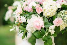 Wedding ~ Pink / Happy pinning.. no limits.. no blocking..❤️