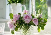 Cottage ~ Pink Spring / Happy pinning.. no limits.. no blocking..❤️