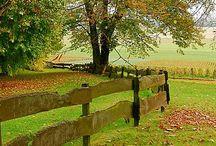 Autumn ~ Turns / Happy pinning.. no limits.. no blocking..❤️