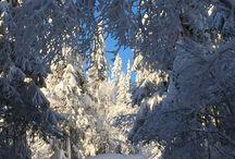My winterwonderland / Nord-Torpa, Synnfjell, Spåtind