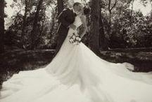 Fairy Tale Wedding / by Savannah Williams