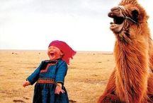 CHUCKLING...CHUCKLING! / by Rachel Grayson