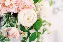 f l o r a l s / Beautiful blooms! Love all things floral. Stop and smell the roses today!