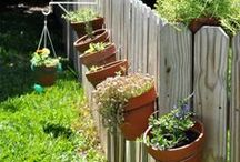 Gardening / Outdoors / Plant a gorgeous garden of flowers, vegetables, herbs and more with these gardening resources and tips. Make your outdoor space a thing of beauty!