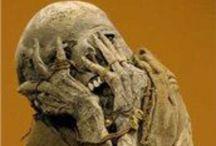 Death - Mummies & Skeletons