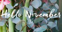 Hello November! / Hello November!