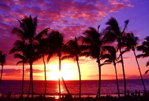 Hawaii / by Cristina Martinez