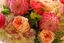 """""""Every flower is a soul blossoming in nature."""" ~Gerard de Nerval / by Meghan"""