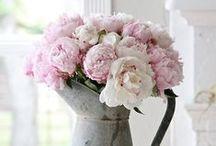 Bloom-Floral Art / Bloom; Flowers; Floral art; Beautiful bouquets