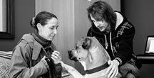 CPPD Human-Canine Bond / The power of the human-canine bond knows no bounds: http://cppdacademy.co.uk