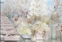 Wedding + Table Scapes / by Lily Pdx 莉莉蔣